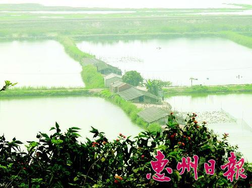 潼湖湿地建设生态旅游城市湿地公园