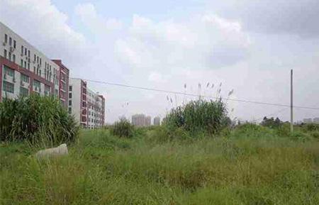 陈江GDP_惠州格林童话附近地块出让 陈江经济发展公司底价拿下