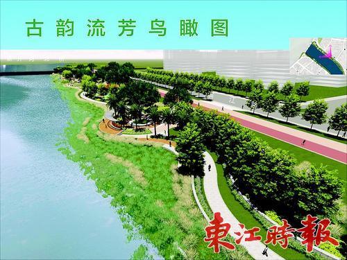 水岸道路绿化效果