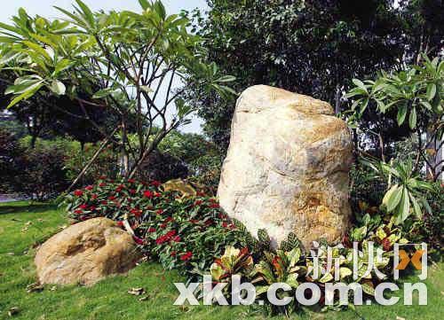 广州市政园林局回应天价石质疑 石头每吨800元