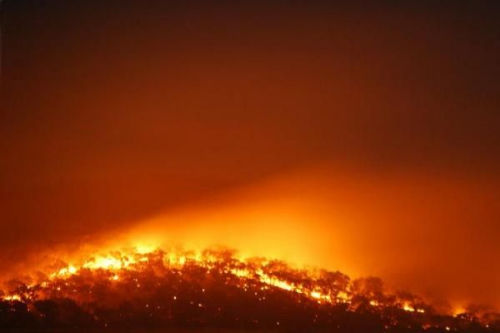 澳大利亚南部发生森林火灾,失控的火势猛烈,不仅烧毁了阿德雷德附近