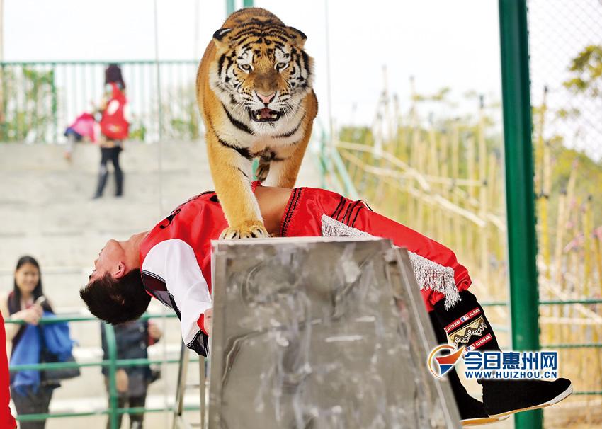 惠州永记生态园 动物园