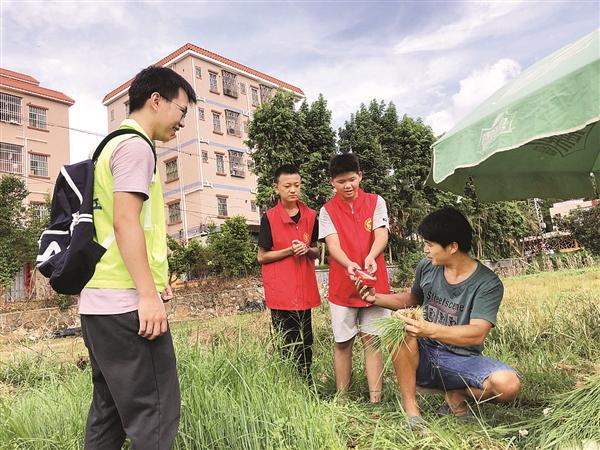 塘布村小浪花志愿服务队的小志愿者给田里的村民送糖水。