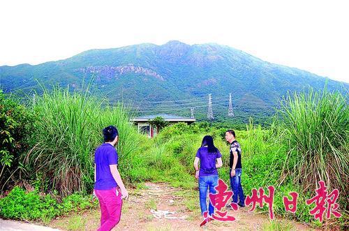 ▲村中斧头山海拔1100多米,地势险峻。
