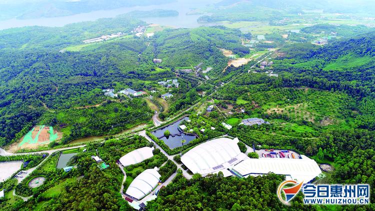 惠州市美丽攻略处处景小镇村庄满绿色够你玩!益阳的桃花源一日游芳菲图片
