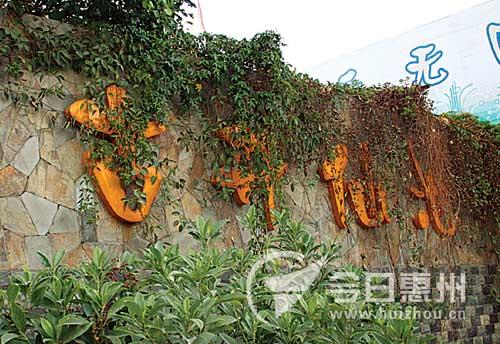 惠阳将修建祖庙美食原貌恢复古井广场文化遗址文档保山淡水图片