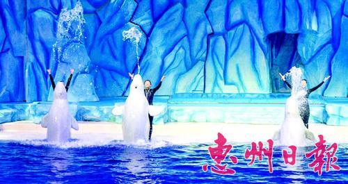 全球最大海洋动物主题公园珠海长隆海洋王国正式迎客