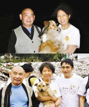 网友评选08感动中国十大动物