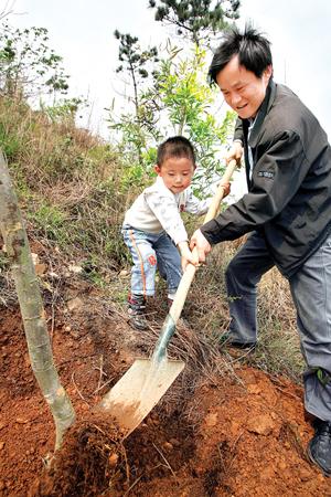 市民梅先生: 一家人植树 温馨 , 感动  父子俩齐心协力