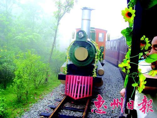 乘坐东部华侨城的森林小火车感受丛林穿行图片