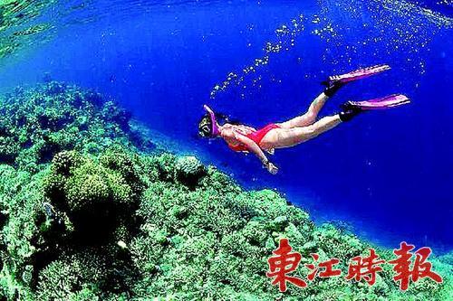 如荒岛求生,海岛寻宝,密林探幽,越野攀岩,深海潜水,帆船冲浪等.